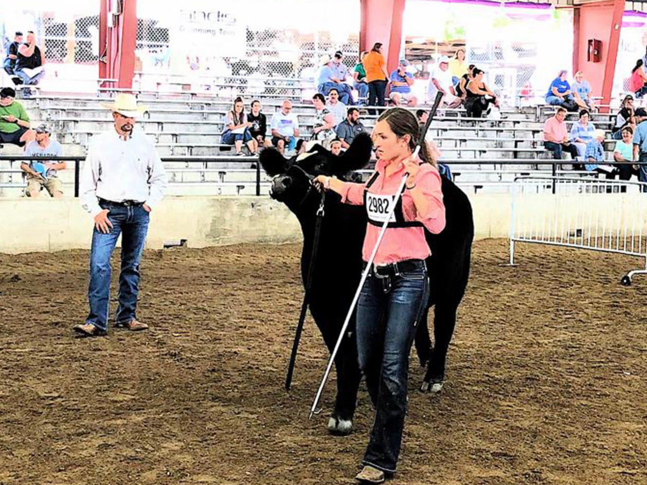Grace link showing before the judge.