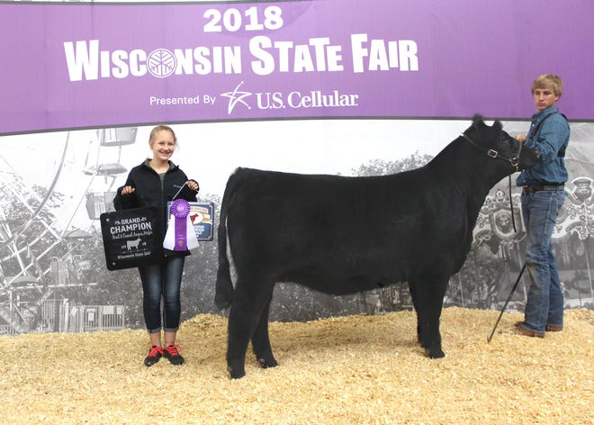 WP Sophia ET 776 won grand champion bred-and-owned female at the 2018 Wisconsin State Fair Junior Angus Show, Aug. 7 in West Allis, Wis. Klayton Lorentz, Woodville, Wis., owns the June 2017 daughter of Colburn Primo 5153. She first won intermediate champion.