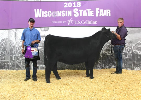 WP Sophia Rt 772 won grand champion owned female at the 2018 Wisconsin State Fair Junior Angus Show, Aug. 7 in West Allis, Wis. Kolin Huth, Richland Center, Wis., owns the April 2017 daughter of S&R Roundtable J328. She first won junior champion.
