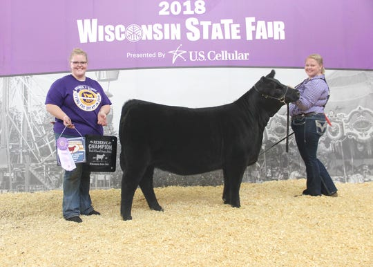 Thornberry Lace 9177 won reserve grand champion bred-and-owned female at the 2018 Wisconsin State Fair Junior Angus Show, Aug. 7 in West Allis, Wis. Claire Hawthorne, Westby, Wis., owns the September 2017 daughter of PVF Insight 0129. She first won senior calf champion.
