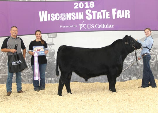 Baldco LW Sensation 744 won reserve grand champion bull at the 2018 Wisconsin State Fair Angus Show, Aug. 11 in West Allis, Wis. Hailey Jentz, Fennimore, Wis., owns the October 2017 son of S A V Sensation 5615. He first won senior calf champion.