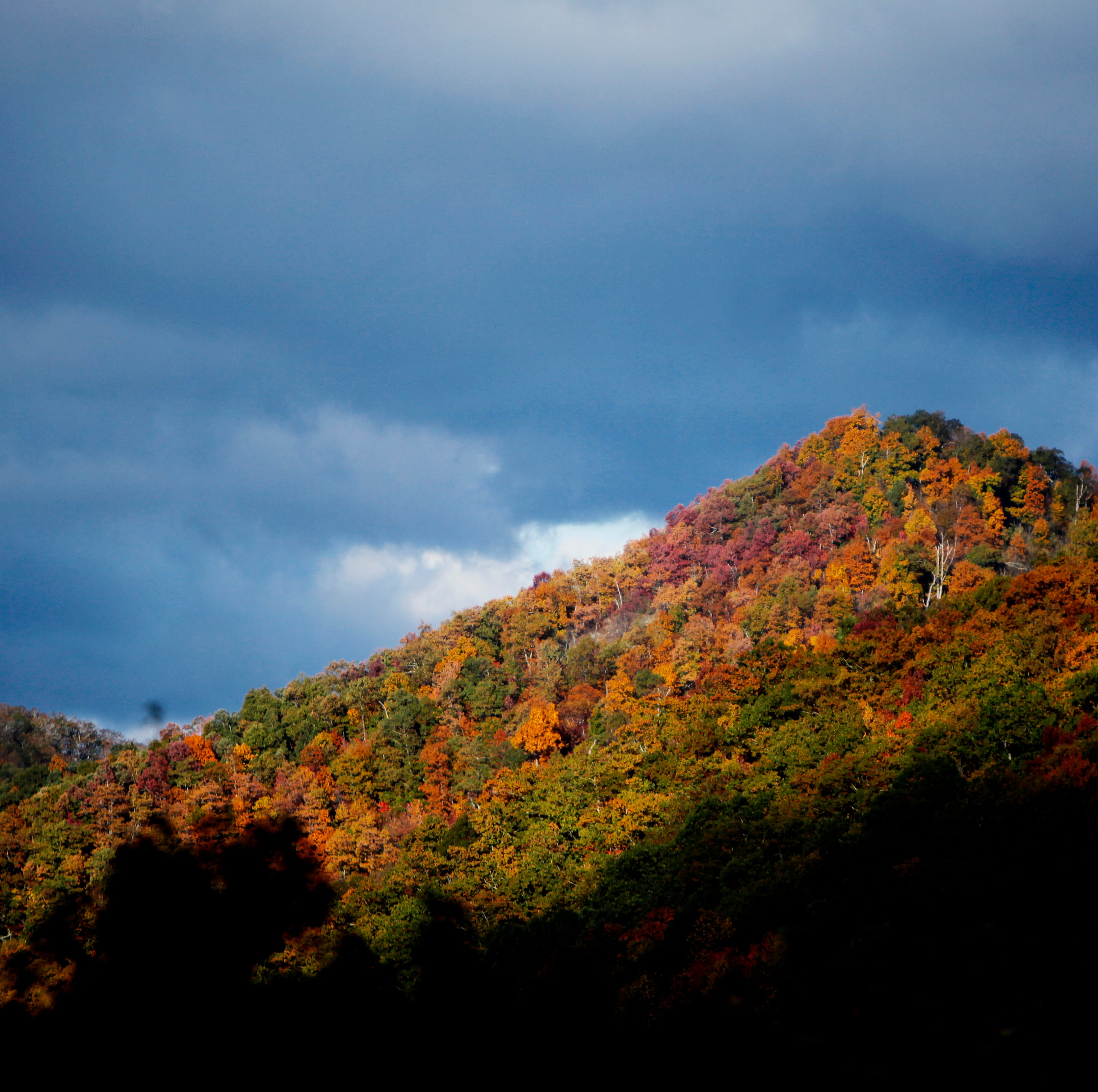 Will Hurricane Florence's effects wash out Western North Carolina fall color?