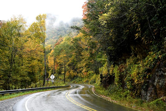 The leaves take on a yellow hue along I-80 South in the Toe River Valley on Tuesday, Oct. 10, 2017. The road is part of the Mount Mitchell Scenic Byway.