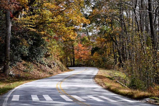 Fall color peeps through along U.S. Alt 74 at the Upper Hickory Nut Gorge Trailhead in Gerton on Nov. 1, 2017.