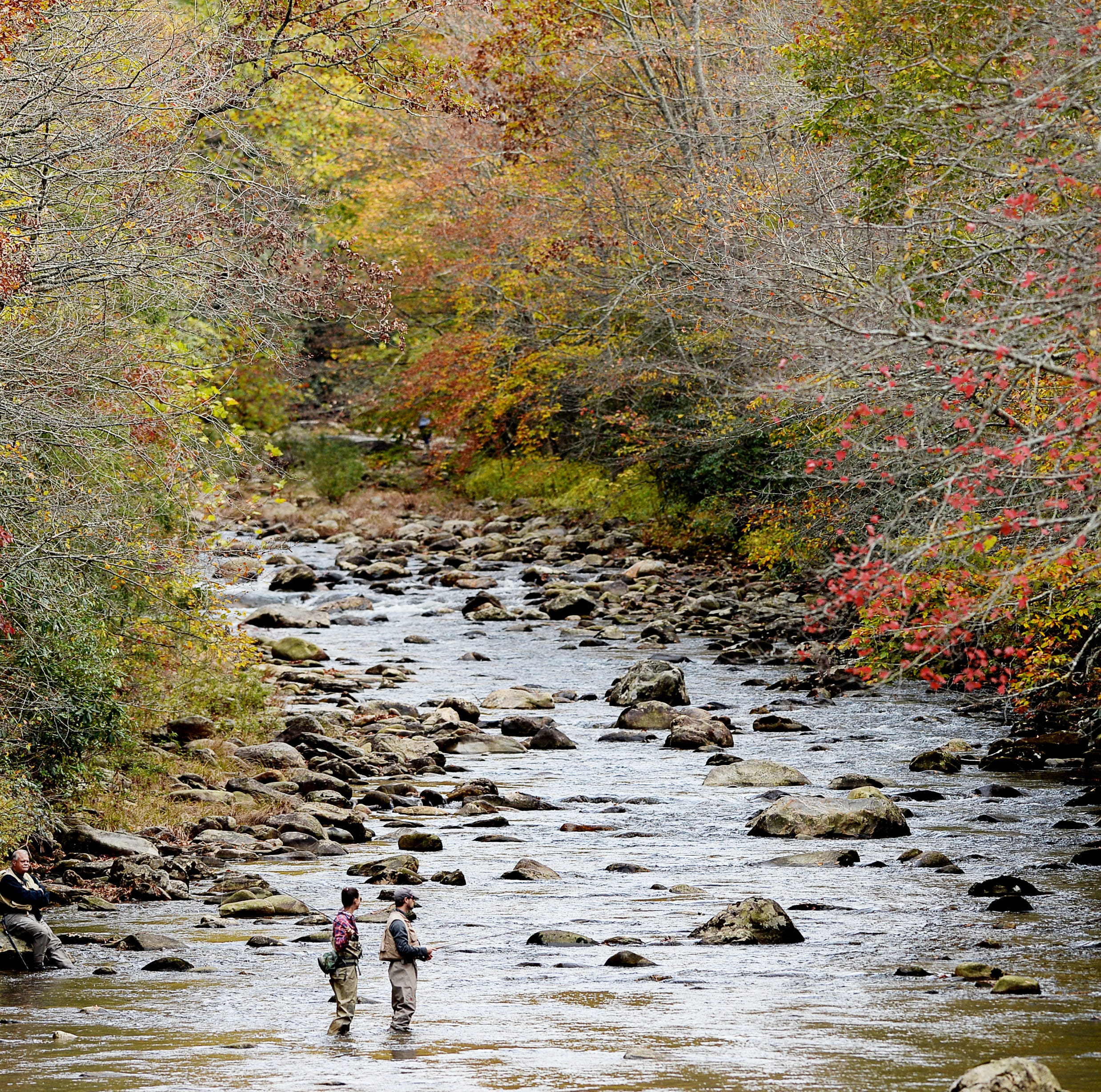 NC constitutional amendment: Are the rights of North Carolina hunters and anglers at risk?