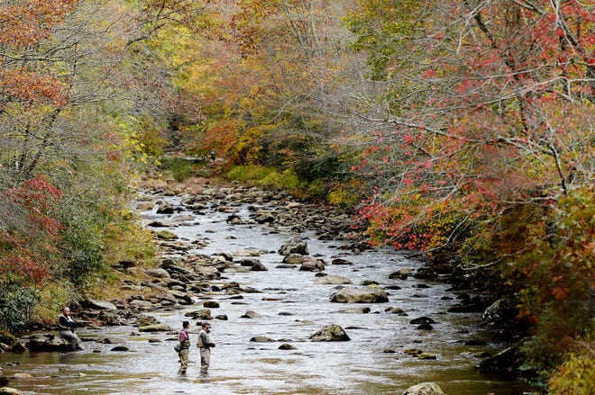 "Anglers fish on Queen Creek in Canton last October. A North Carolina ballot item this fall gives people the option to vote for a ""right to hunt and fish"" constitutional amendment."