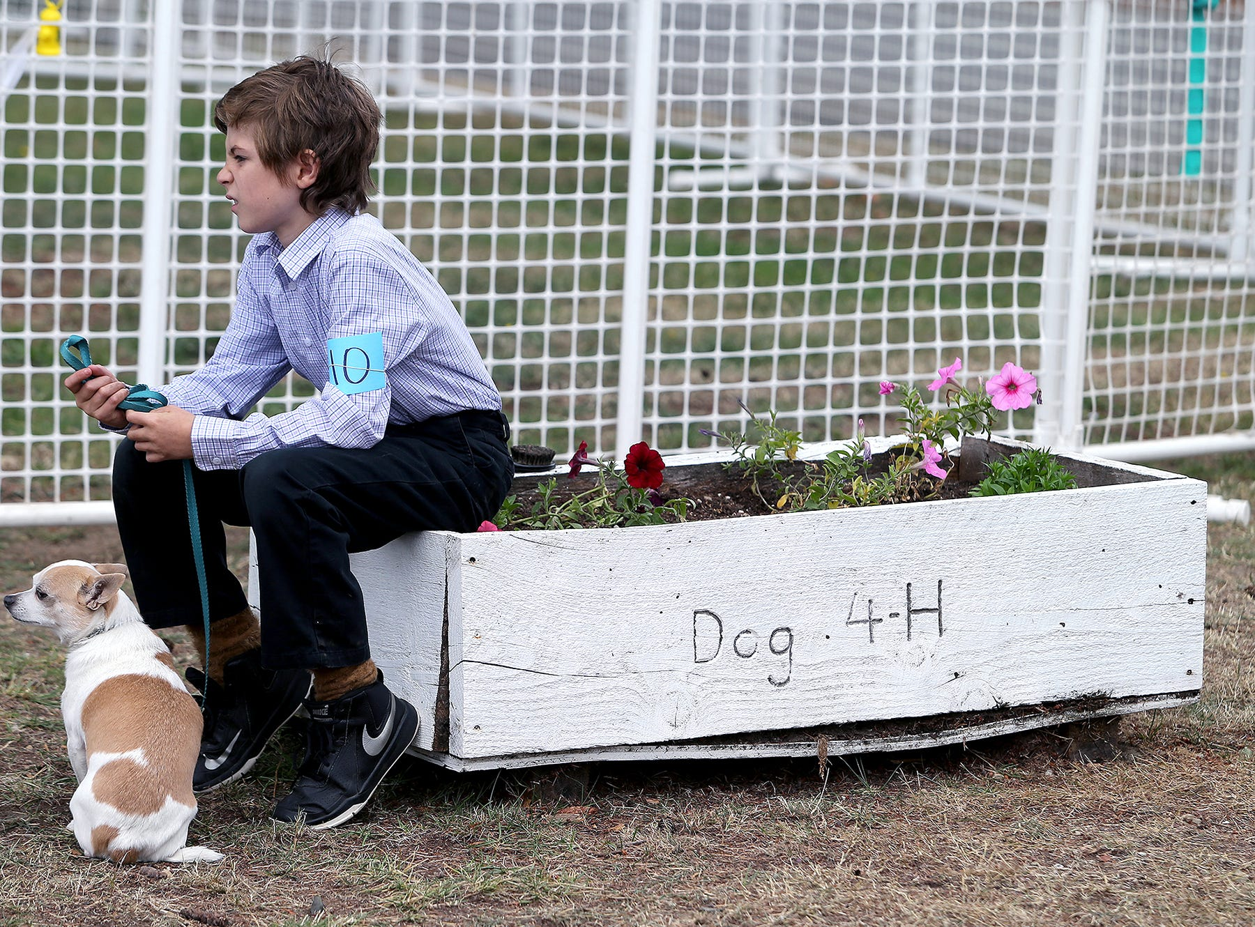 Michael Tabor, 10, of Bremerton waits with his dog Dexter for his turn in the beginner obedience class at the Kitsap County Fair & Stampede on Thursday, August 23, 2018, at the Kitsap County Fairgrounds.The fair goes from 10 a.m. until 10 p.m..It was his first time showing at the fair and had already picked up one blue ribbon.