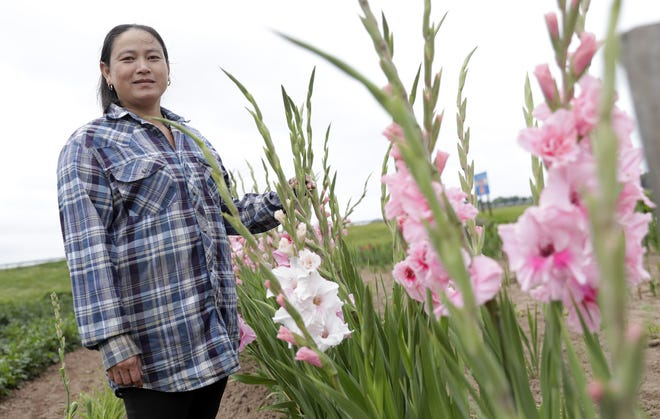 Ia Lee stands by some of the gladiolus in her flower garden in rural Brown County where she grows dozens of varieties to sell at the Saturday Farmers Market.
