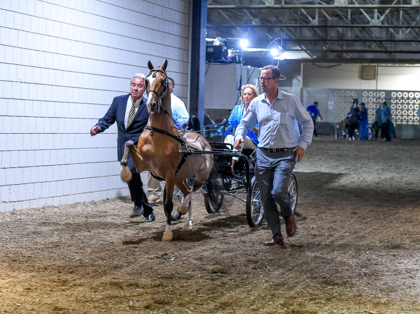 Mary Gaylord McClean enters Freedom Hall with her Hackney Pony