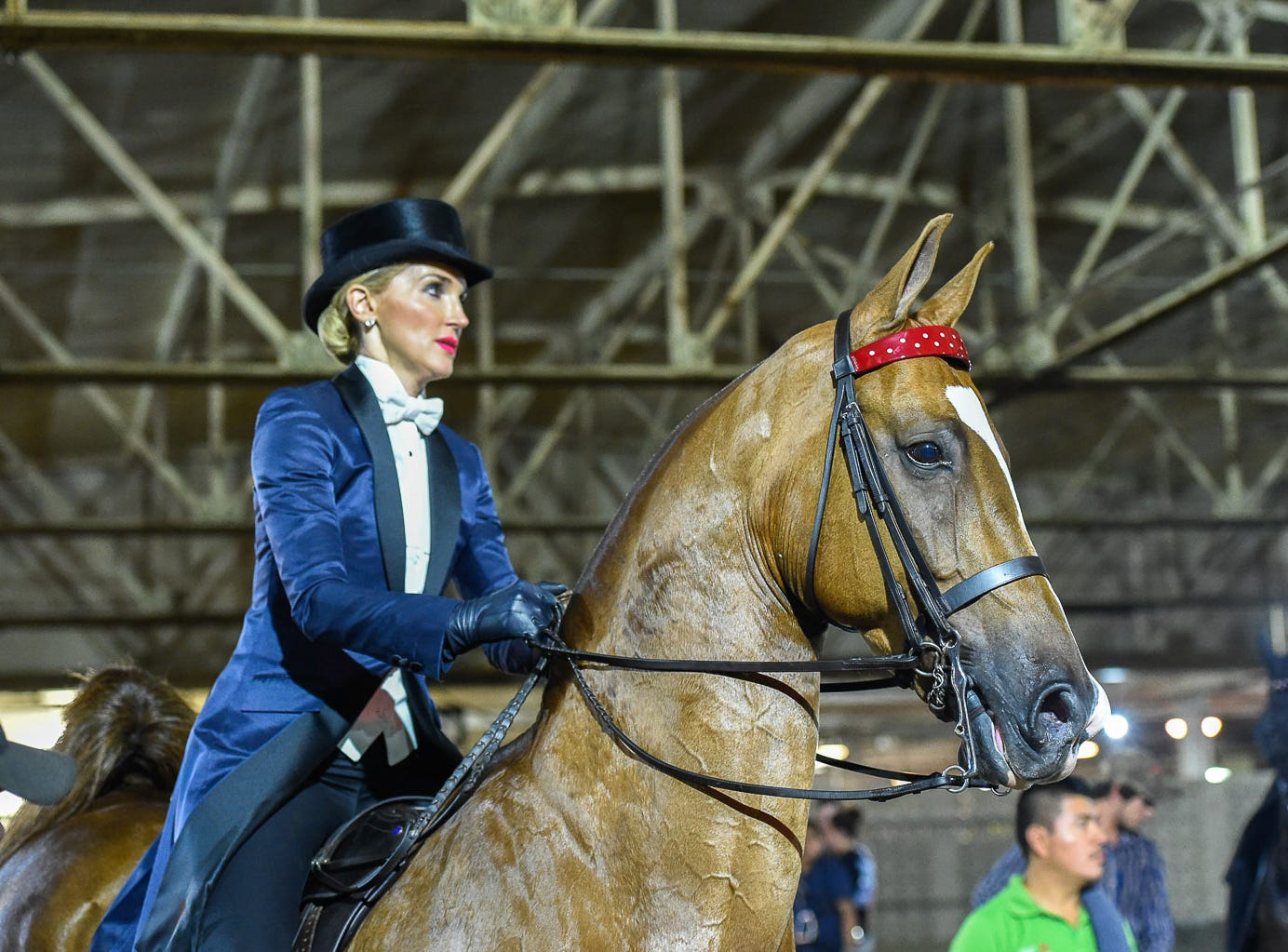 Its a World Champion Tile and a Triple Crown year for Mary Jane Glasscock Kirkpatrick. Her family's race horse Justify earlier this year and now her Saddlebred, Macadamia wins the 3 GAITED LADIES AMATEUR OVER 15.2 class. 