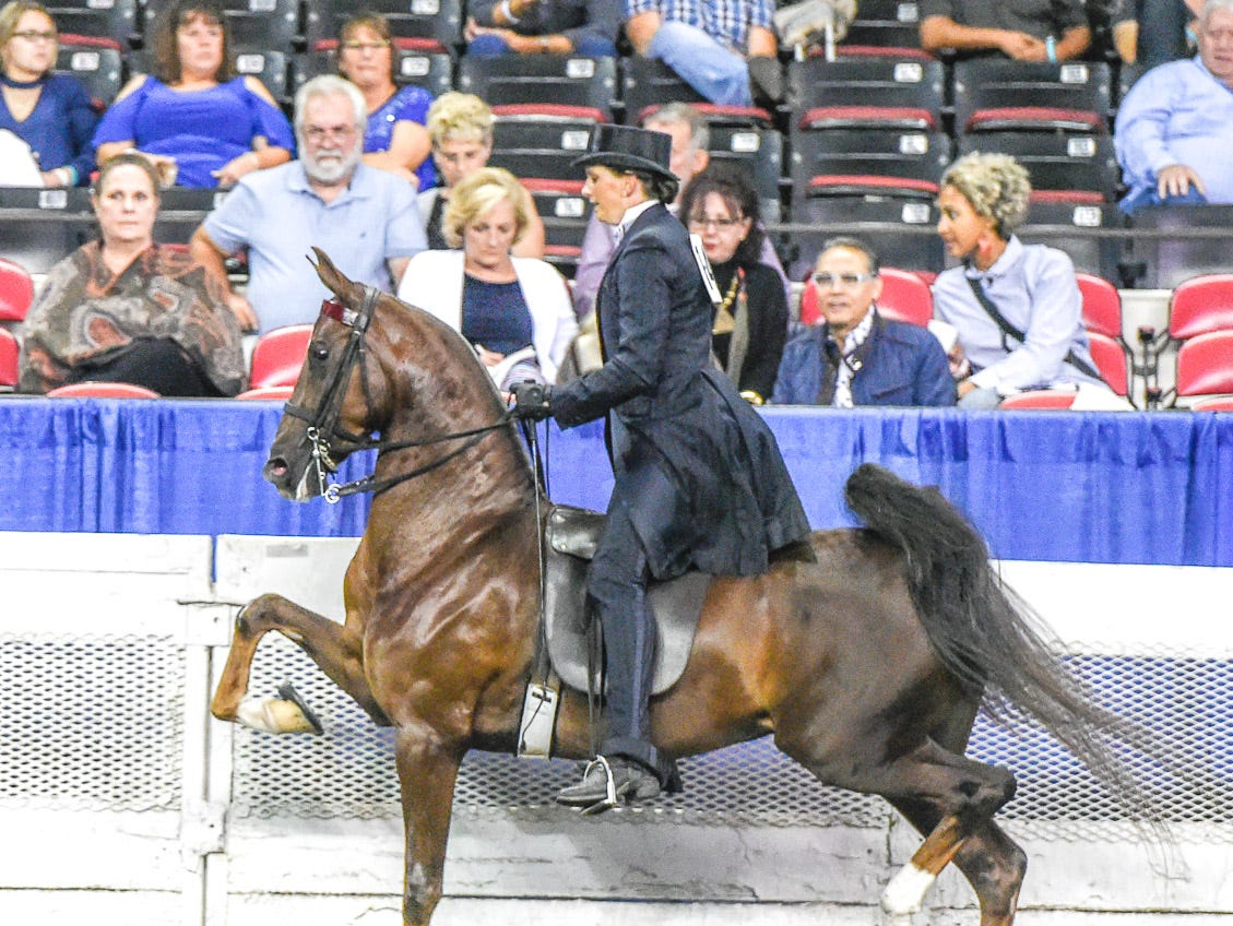 HS Brilliant Heiress (152919M) 2015 