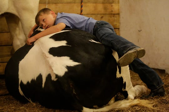"""I think he will miss me and his other friends,"" said Harland Meissner, 9, while sharing some last moments with Brain-ee, after the cow was purchased by Chili Implements earlier in the night during the market animal show at the Central Wisconsin State Fair in Marshfield Wednesday, August 22, 2018."