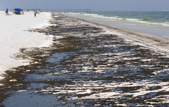 Mats of oil from the Deepwater Horizon oil spill wash ashore along Pensacola Beach on June 23, 2010.