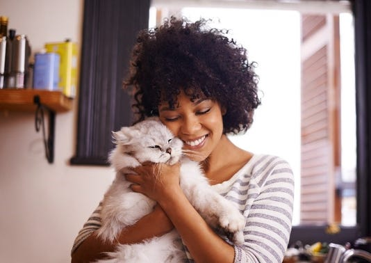 A pet can make you healthier, both mentally and physically.