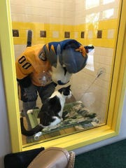 Galileo recently had a visit from Gnash, his favorite celebrity.