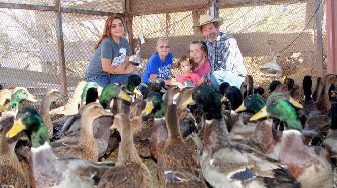 """The Larry Von Tress Family are the new Duck Wranglers for the Great American Duck Race this weekend. The family raised 130 thoroughbred ducks over a five-month period for the 39th running of what is arguably the """"World's Richest Duck Race.""""  Pictured with Larry are, from left, Haley, Esther, Gracie and Lynette."""
