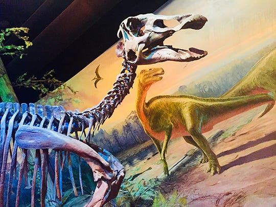 You will feel like you are at The Smithsonian while visiting the North Carolina Museum of Natural Sciences, the largest institution of its kind in the Southeast.