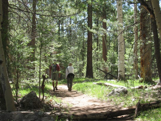 Hikers take the easy loop of the Veit Springs Trail, accessible from Snowbowl Road north of Flagstaff.