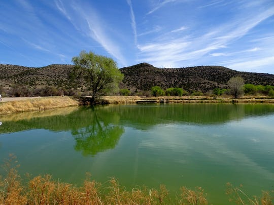 Bubbling Ponds is part of Page Springs Fish Hatchery, where visitors can hike, picnic and view the facilities and young fish.