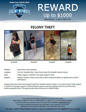 Silent Witness is offering up to a $1,000 reward on any information on suspect stealing over $4,000 worth of merchandise.