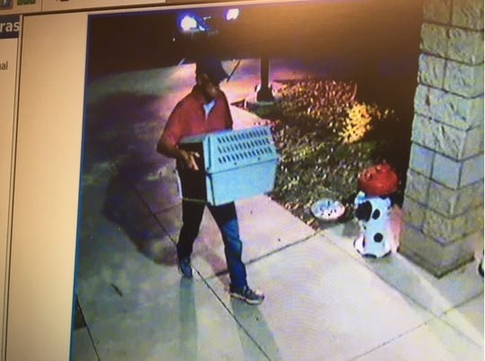 Security video shows a man walking away from a Gardnerville animal shelter after leaving an animal carrier at the door on Aug. 16, 2018. The carrier contained a gravely neglected cat, officials said.