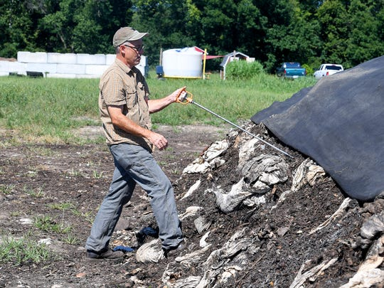 Eric Walter, president and chief composting officer of Black Bear Composting, retrieves the several foot thermometer he is using as he collected a temperature from deep inside one of their composting piles at their location in Crimora on Thursday, August 23, 2018.
