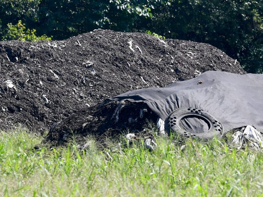 An uncovered pile is compost being aged and cured while a covered pile is still composting at Black Bear Composting in Crimora on Thursday, August 23, 2018.
