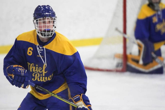 Evan Bushy had 11 goals and 33 points in 31 games for Thief River Falls High School last season as a sophomore. He has verbally committed to play for St. Cloud State.