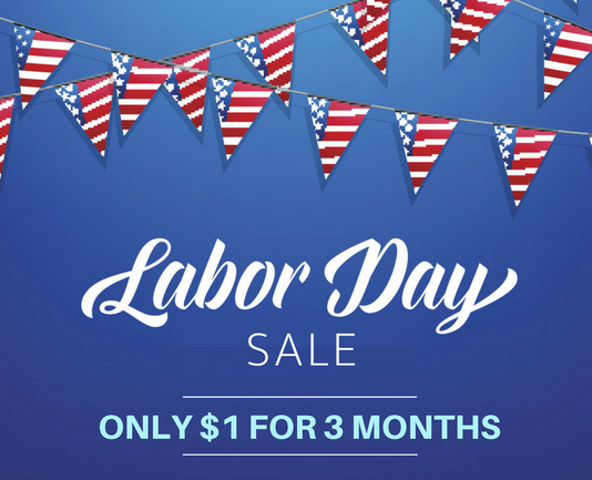 Labor Day Sale Flags Copy