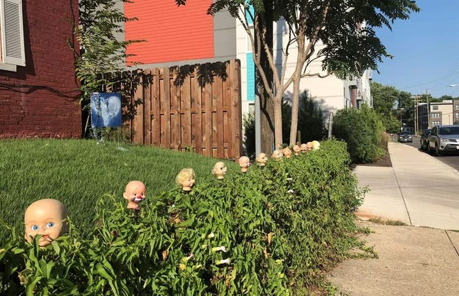 Baby doll heads line a yard on Knowlton Street in Northside