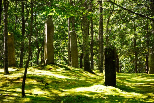 "Japanese moss garden within ""Yugen,"" a 20-acre private garden in East Hampton."