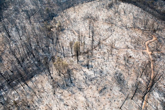 Aerial shows a burned landscape in the Mary Lake area following the Carr Fire in Redding.