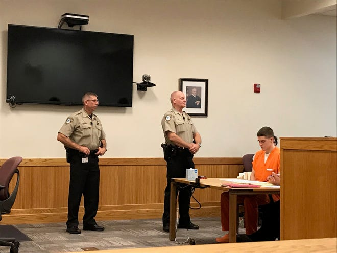 Matthew Jordan Carrier pleads no contest in Livingston County Circuit Court on Friday, Aug. 24, 2018.
