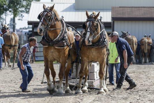 Man County Fair 082318 Jc0258