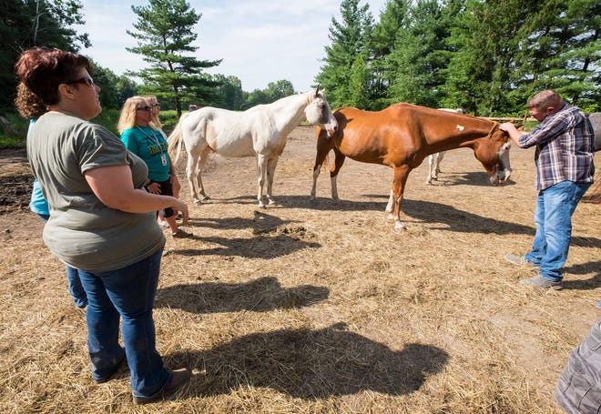 Adam Trupe, right, pets Lucky, a 17-year-old horse during a game at Wisdom Ranch Friday, Aug. 24, 2018. Wisdom Counseling LLC hosts an equestrian therapy session for veterans on the farm.