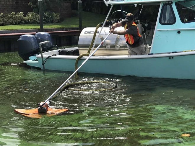 John Rambo, a Sea Tow captain (and yes, that's his real name) guides a stingray-shaped float Friday, Aug. 24, 2018, to suck blue-green algae out of a Palm City residential canal and into a tank for disposal.