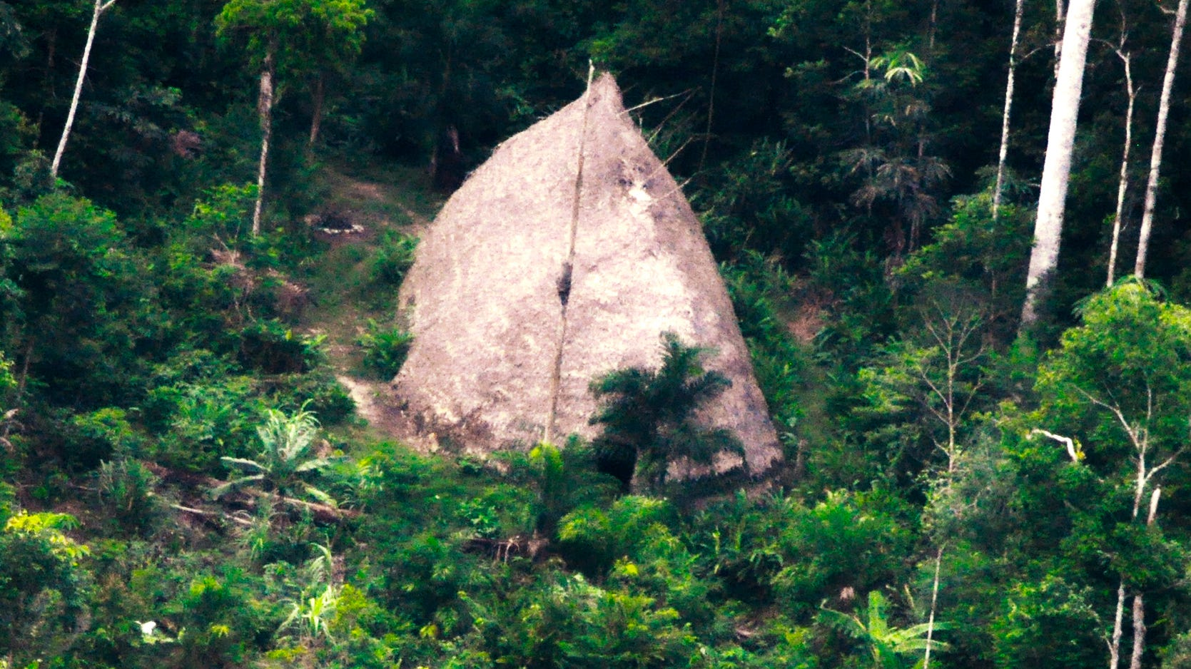 Unknown Amazon tribe stumbled on by drone photographs in Brazilian jungle thumbnail
