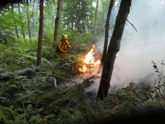 Illahee Preserve brush fires