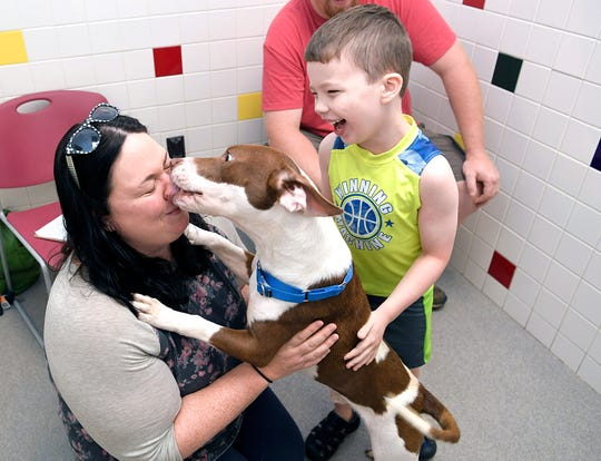 Bethany Burgess of Lewisburg gets licked by a dog as her son, Eli, laughs during Mars Petcare's Adoption Weekend at Nashville Humane Association on Saturday, August 25, 2018. Middle Tennessee's three largest shelters celebrated a 10-year partnership with Mars Petcare, which paid for adoption fees during this weekend's anniversary.