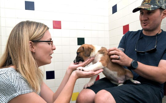 Jessica and Daniel Blaich play with a puppy during Mars Petcare's Adoption Weekend at Nashville Humane Association on Saturday, August 25, 2018.