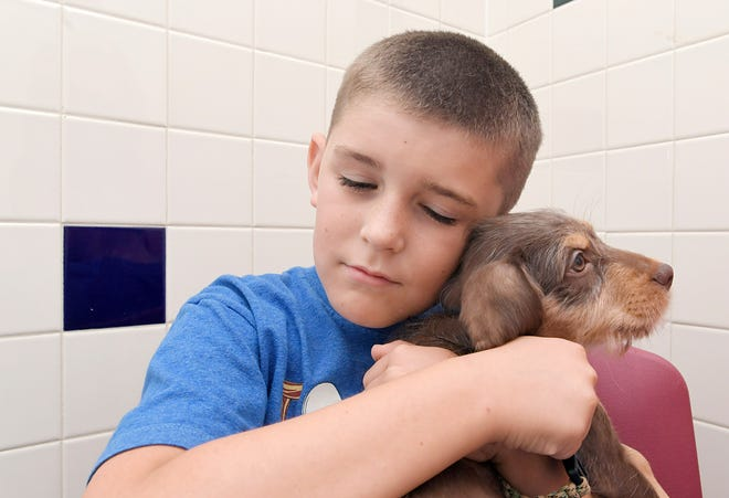 Evan Matthews 9, hugs a puppy during Mars Petcare's Adoption Weekend at Nashville Humane Association on Saturday, August 25, 2018. Middle Tennessee's three largest shelters celebrated a 10-year partnership with Mars Petcare, which paid for adoption fees during this weekend's anniversary.