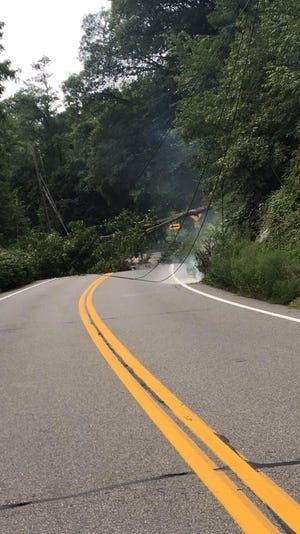 A tree fell on Bear Mountain Bridge Road and ripped down power lines with it.