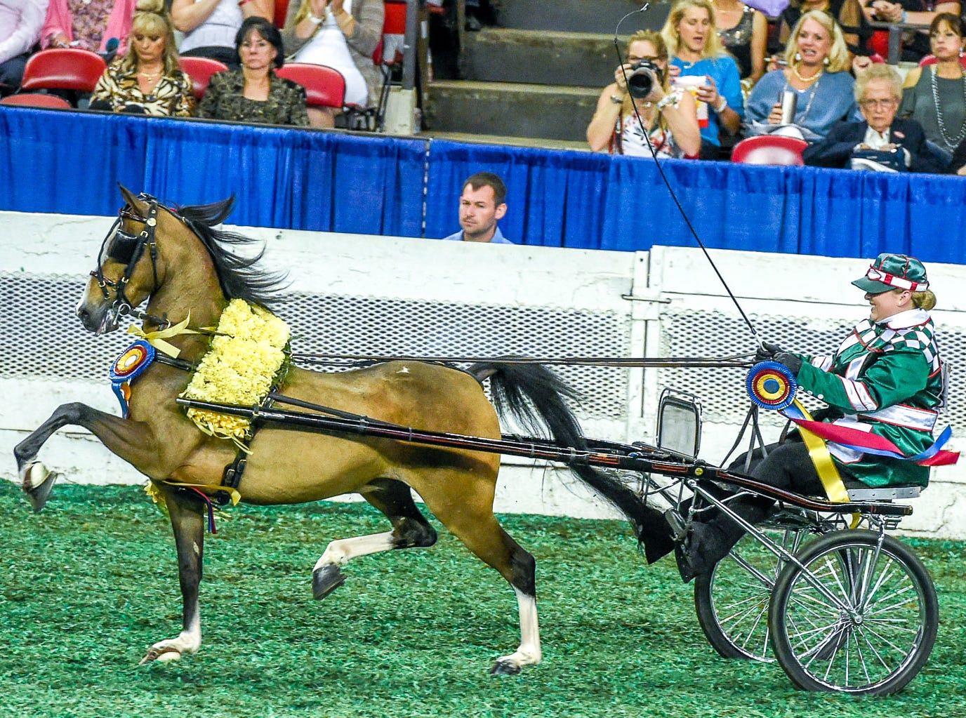AMATEUR ROADSTER PONY CHAMPIONSHIP winner AG MASERATI driven by Allie Nunley for All Well Farm trained by Maureen Campbell