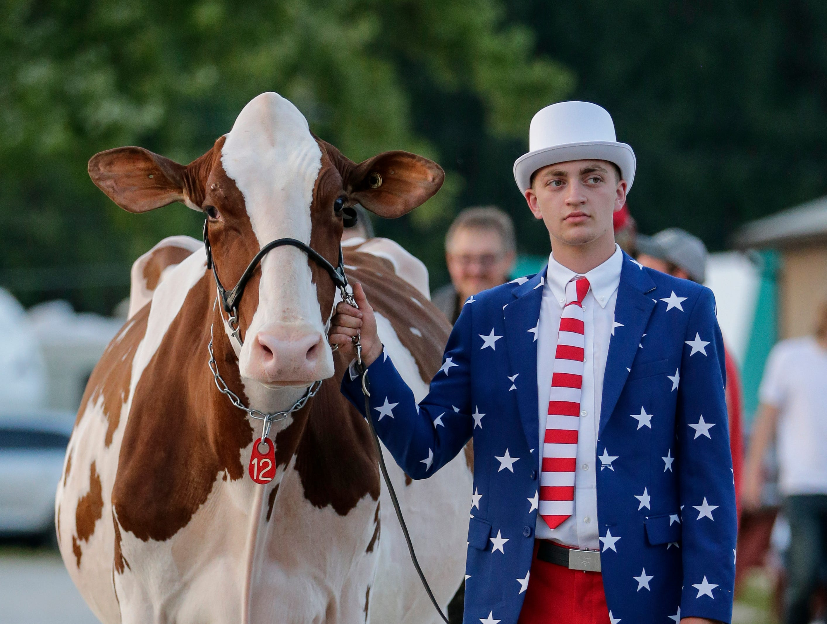 "Jake Siemers and Jersey cow ""Siemers ABout Greta-Red-ET"" of Siemers Holsteins in Newton wait for their entrance during the Manitowoc Culver's Futurity at the Manitowoc County Fair Saturday, August 25, 2018, in Manitowoc, Wis. Siemers won best dressed for his patriotic suit inspired by this years' ""All-American Fair"" theme. Josh Clark/USA TODAY NETWORK-Wisconsin"
