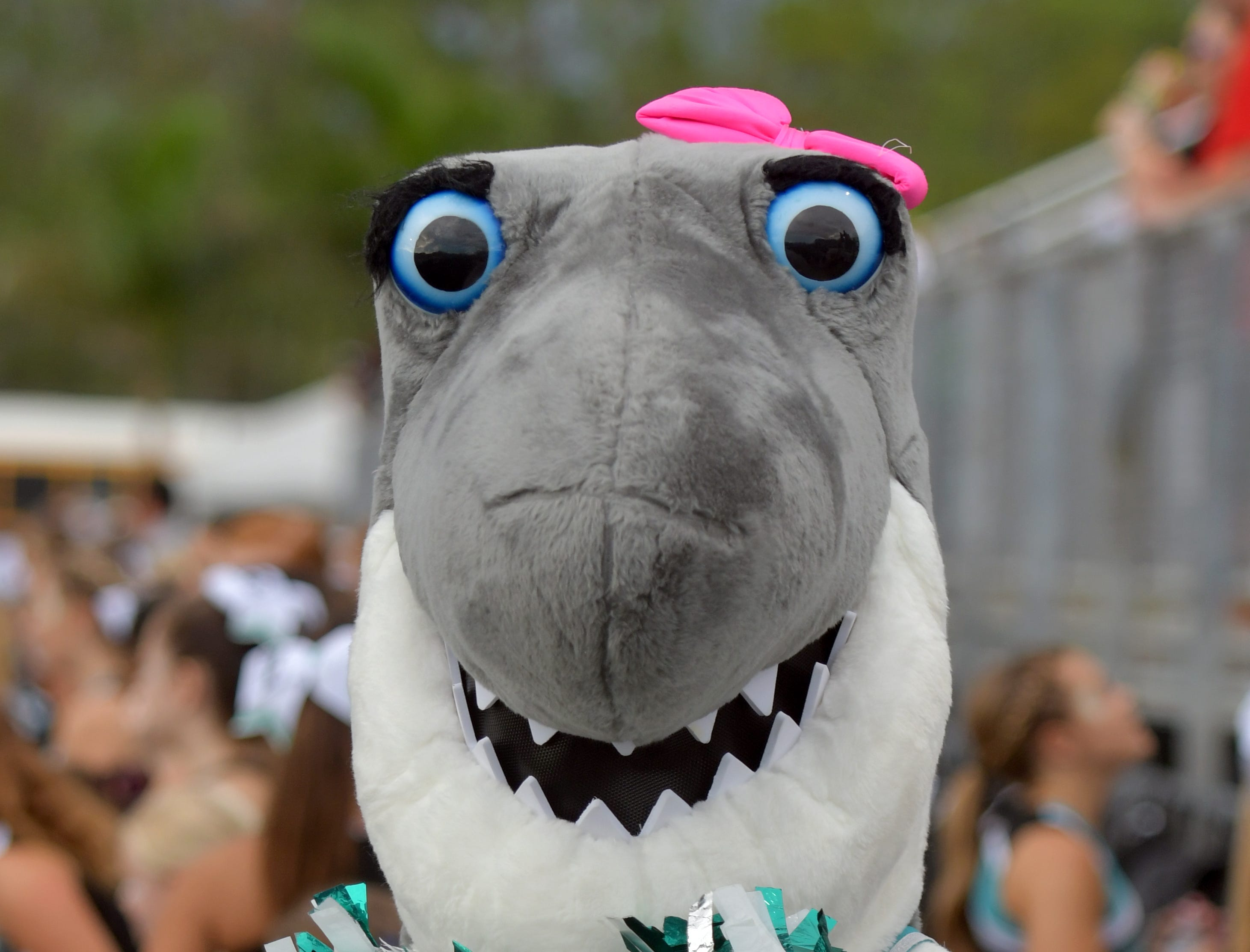 Gulf Coast High School Shark mascot during their game with Lely High School  in Naples on Friday, Aug. 24, 2018.