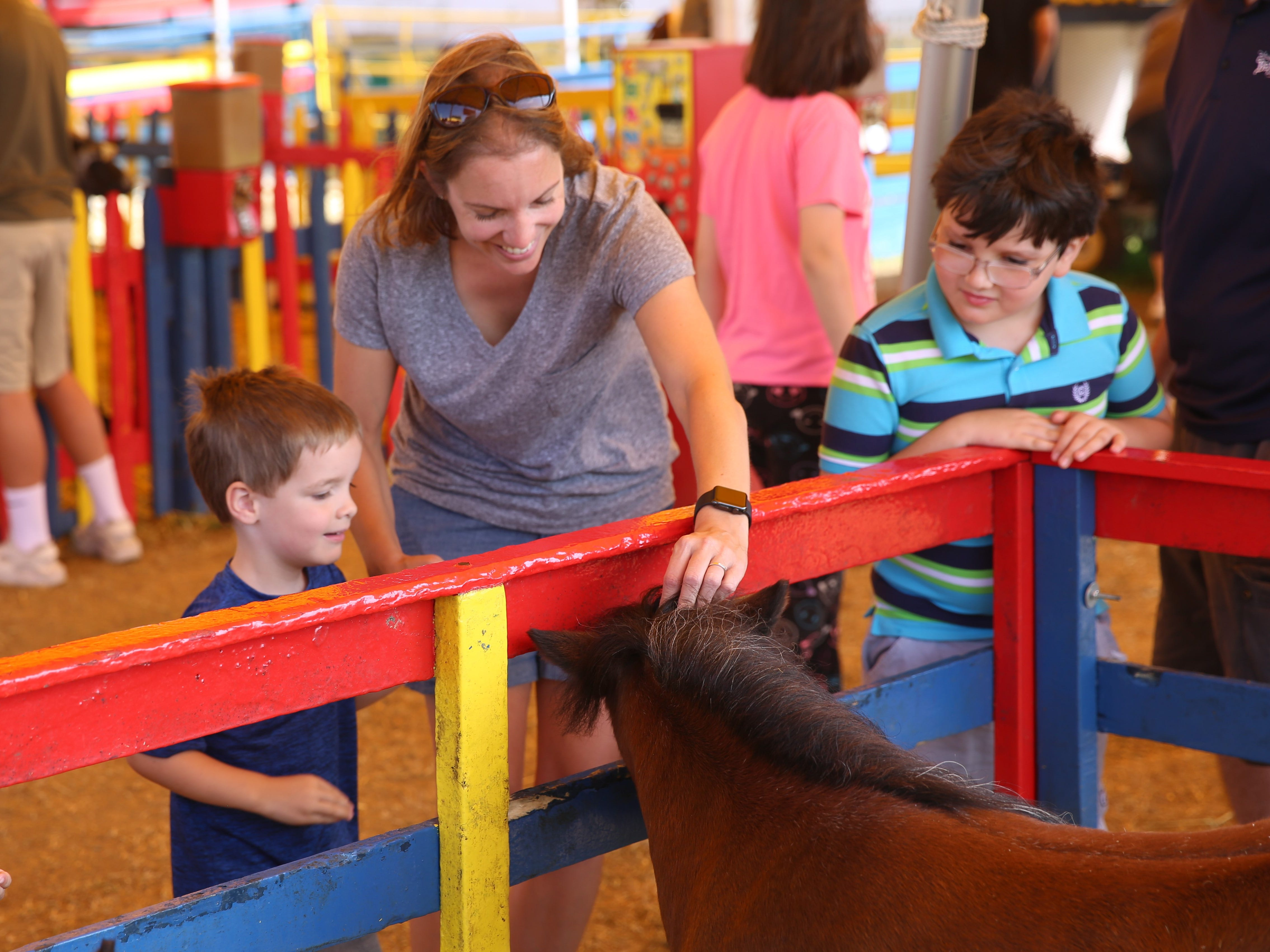 Karen Adamec (center), of Highland, pets a miniature horse alongside her 3-year-old son, Liam Adamec (left), and 8-year-old son Andrew Adamec (right). She said she likes that there are so many options at the Dutchess County Fair.