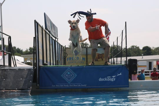 Brian Tait, of New Windsor, watches as his dog — a yellow lab named Atlas  — leaps after a toy he tossed into the pool. He said he and his dog have come to the Dutchess County Fair for the past 10 years.