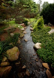 Water features not only can create attractive background noise, they also can attract wild evening visitors such as frogs