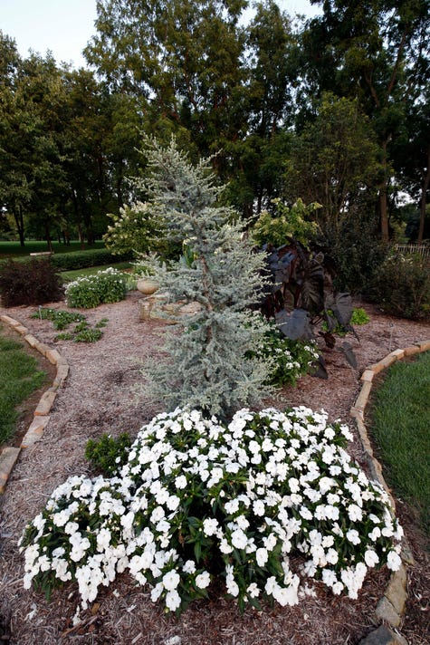 White Garden 158693