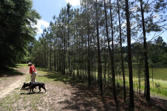A woman walks her dog along a path located near the intersection of Fred George and Mission Roads, where the city has plans to create a park with playgrounds, trails, picnic pavilions, athletic fields and courts for basketball, disc golf, sand volleyball and pickleball.